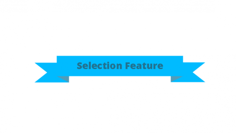 Selection Feature